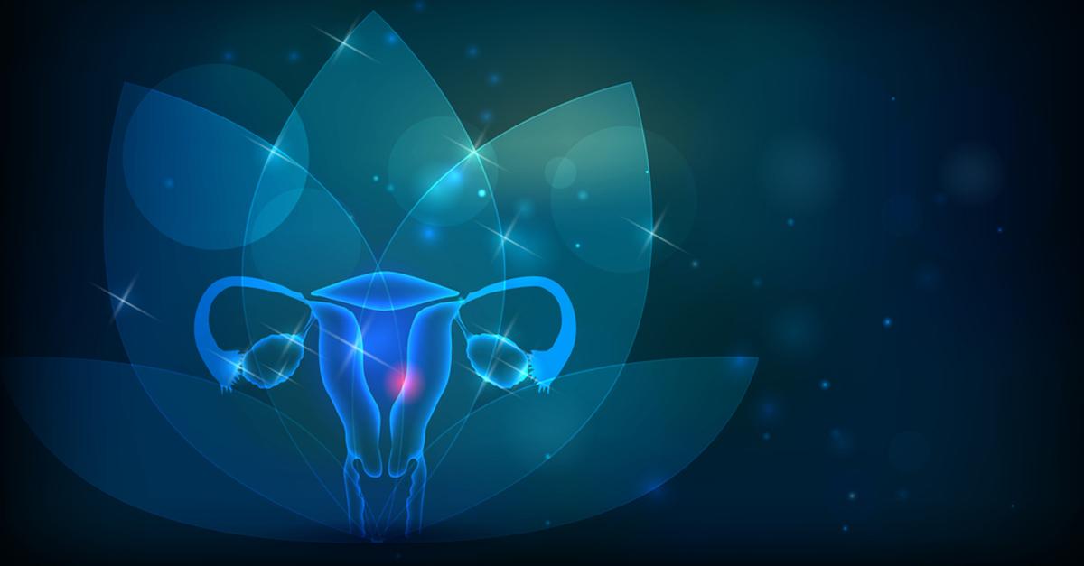 muttermund schwangerschaft