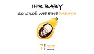 SSW 27 (Schwangerschaftswoche 27)