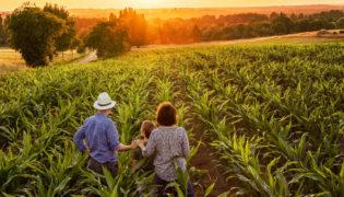 Bauernhof macht Babys gesund