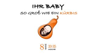 SSW 35 (Schwangerschaftswoche 35)