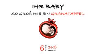 SSW 25 (Schwangerschaftswoche 25)