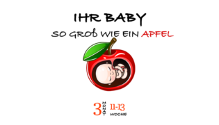 SSW 13 (Schwangerschaftswoche 13)