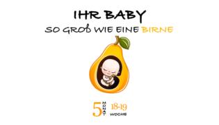SSW 18 (Schwangerschaftswoche 18)