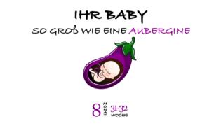 SSW 31 (Schwangerschaftswoche 31)